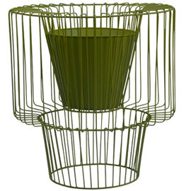 Cageplanters_m