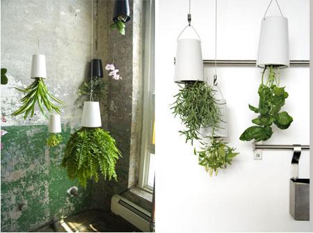 switched on set sky planter by patrick morris. Black Bedroom Furniture Sets. Home Design Ideas