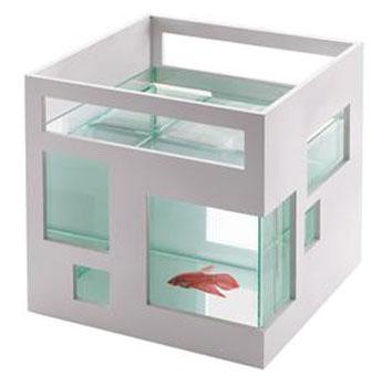 Fishcondo