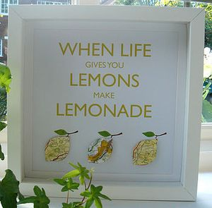Normal_WHEN_LIFE_GIVES_YOU_LEMONS
