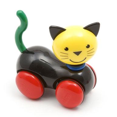 Patrick Rylands cat