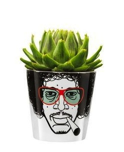 Jimmy flower pot