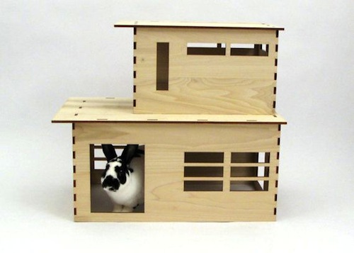 Modernist rabbit hutch