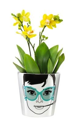 Hepburn flower pot