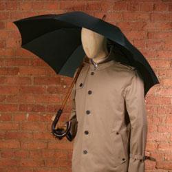 Fox_umbrella
