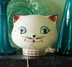 Cat_string