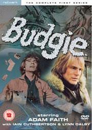 Budgie2
