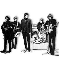 Byrds_1