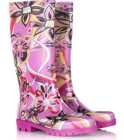 Pucciwellies